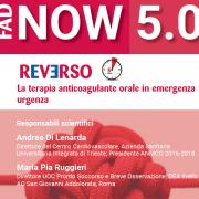 Reverso - FAD Now 5.0